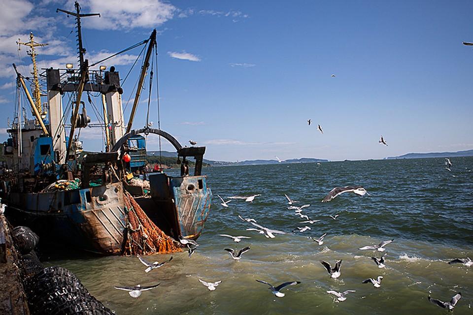Российские пограничники подтвердили задержание рыбаков из Запорожской области