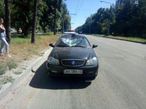 В Запорожье легковушка сбила выбежавшего на дорогу оленя – ФОТО