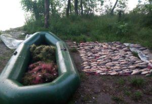 В Запорожской области завершился сезон нереста