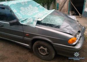 Ночью в Запорожской области пьяный водитель насмерть сбил двух пешеходов - ФОТО