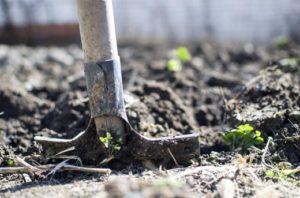 В Запорожской области обнаружили несколько десятков взрывоопасных снарядов и мин