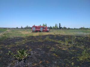 Запорожская область продолжает страдать от пожаров: за сутки произошло 34 случая возгораний природных экосистем - ФОТО