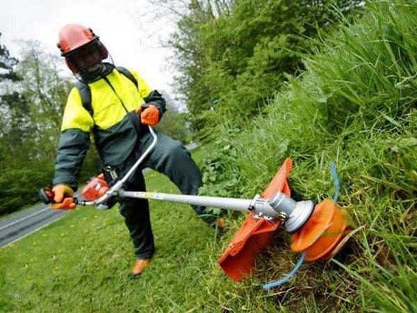 В Запорожье провалились торги по озеленению и покосу травы на 3,5 миллиона гривен