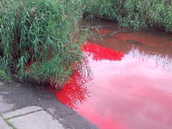 В запорожской экоинспекции подтвердили, что история с «красной рекой» – фейк
