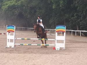 В Запорожье прошел областной чемпионат по конному спорту - ФОТО