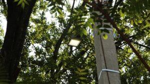 В Запорожье вандалы украли четыре уличных светильника