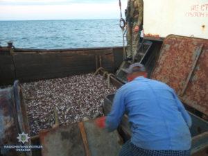 В Запорожской области продолжается расследование по факту масштабного вылова рыбы: часть изъятых документов содержит признаки подделки - ФОТО, ВИДЕО