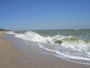 В Запорожской области на берег выбросило тело отдыхающего