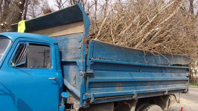 Запорожские коммунальщики убирают поваленные деревья и ветки