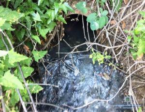В Кирилловке обнаружили трубопровод, сбрасывавший нечистоты в Утлюкский лиман - ФОТО, ВИДЕО