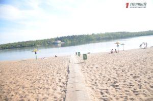 В Запорожье на Центральном пляже обнаружили трупы утопленных щенков – ФОТО