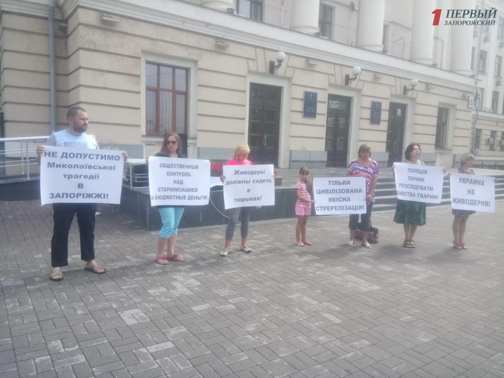 Запорожские зоозащитники митингуют против жестокого обращения с животными - ФОТО