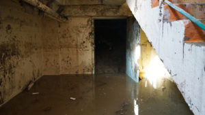 В Запорожской области затопило подвал школы: на месте работали спасатели - ФОТО