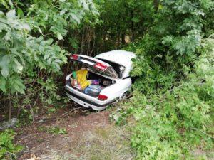 В Запорожской области пьяный водитель вместе с пассажирами угодил в ДТП – ФОТО