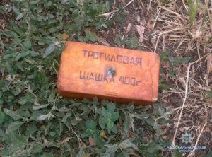 Житель Запорожской области хранил дома тротиловую шашку весом почти в полкило – ФОТО