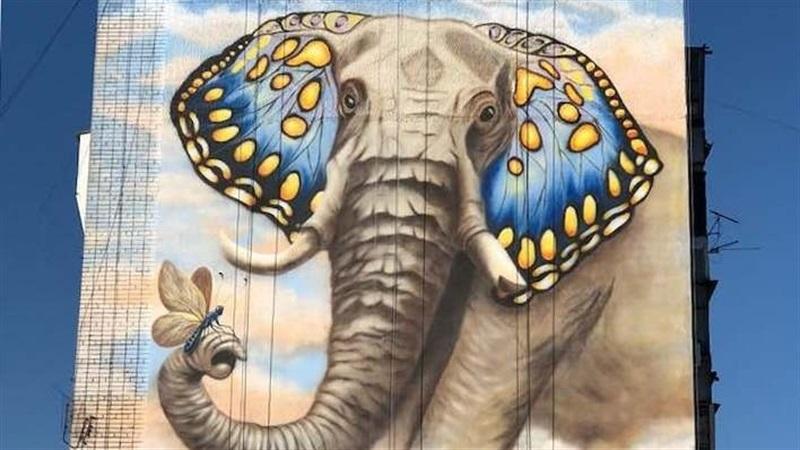 Запорожскую многоэтажку украсил яркий мурал со слоном - ФОТО