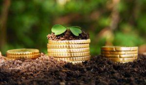 Запорожцы заплатили более 600 миллионов гривен платы за землю