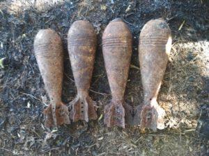 Опасная находка: в Запорожской области в лесополосе обнаружили более полусотни боеприпасов - ФОТО