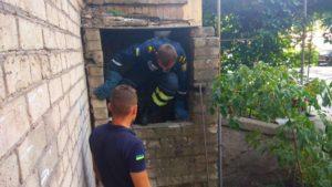 В Запорожской области спасатели вытащили собаку, застрявшую в подвале - ФОТО