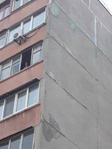 В Запорожье завели уголовное дело на женщину, выбросившую собаку с седьмого этажа - ФОТО