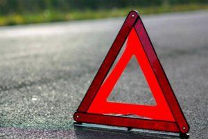 В Запорожской области мопед врезался в дерево: водитель погиб на месте ДТП