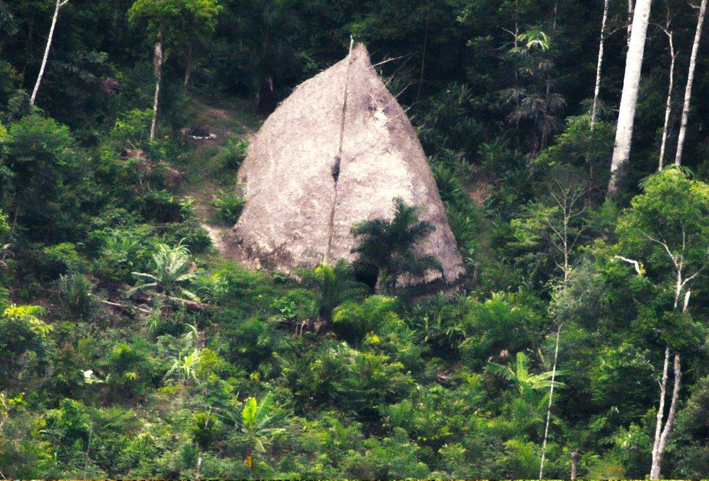 В Бразилии обнаружили затерянное племя дикарей - ФОТО, ВИДЕО
