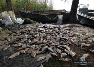В Запорожской области будут судить четырех мужчин, занимавшихся браконьерством в «промышленных» масштабах - ФОТО