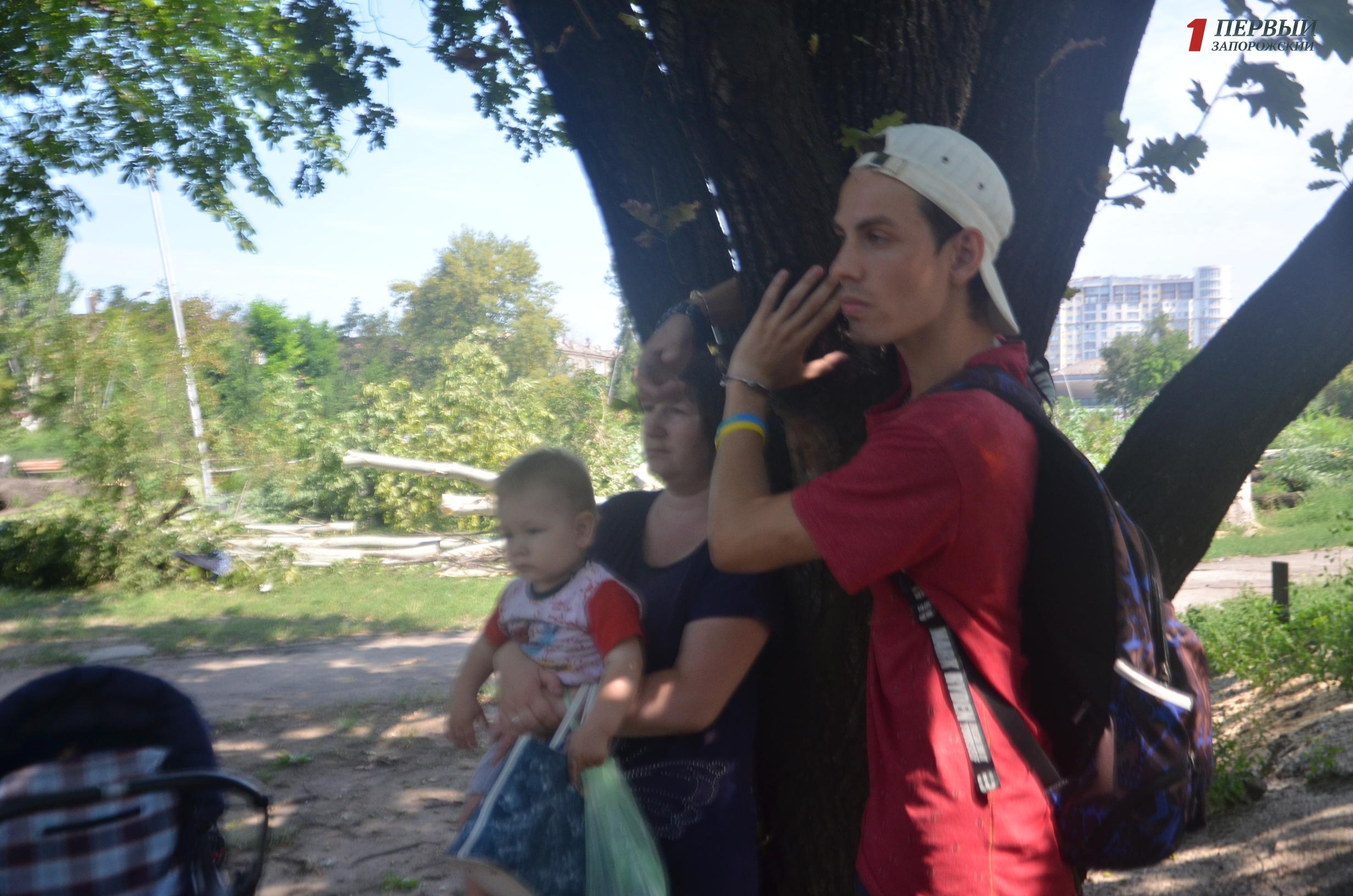 Запорожский активист в парке Яланского пристегнулся наручникамик дереву и заявил, что не позволит уничтожить парк - ФОТО, ВИДЕО