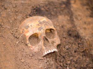 В Запорожье на пустыре обнаружили скелет человека - ВИДЕО (18+)