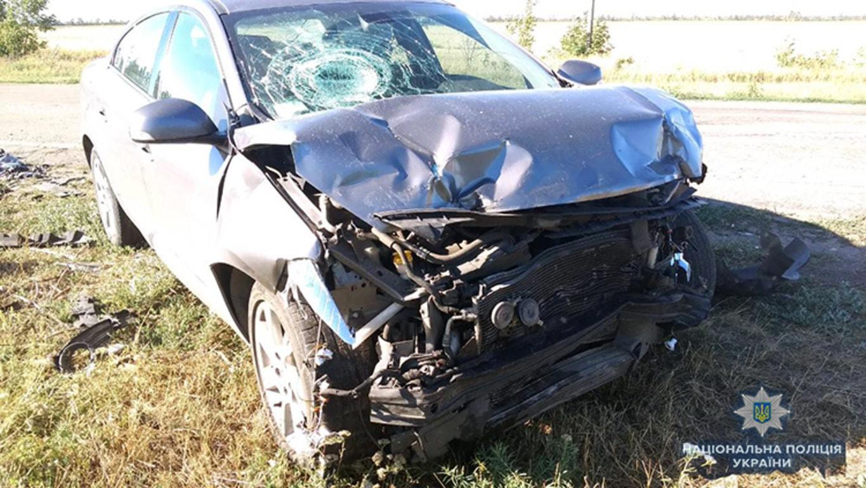 В полиции рассказали подробности смертельного ДТП на запорожской трассе - ФОТО