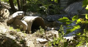 В Запорожье презентовали программу очистки малых рек на ближайшие десять лет - ФОТО