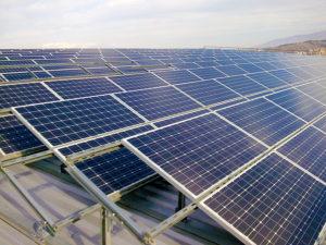 В Запорожской области планируют построить солнечную и ветровую электростанции