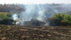 Пожары в Запорожской области пылали почти на 22 гектарах открытой территории - ФОТО