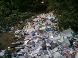 В Запорожье обнаружили опасную несанкционированную свалку медицинских отходов – ФОТО
