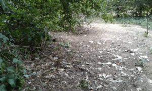 Замели следы: в Запорожье таинственным образом исчезла мусорная свалка с медицинскими отходами