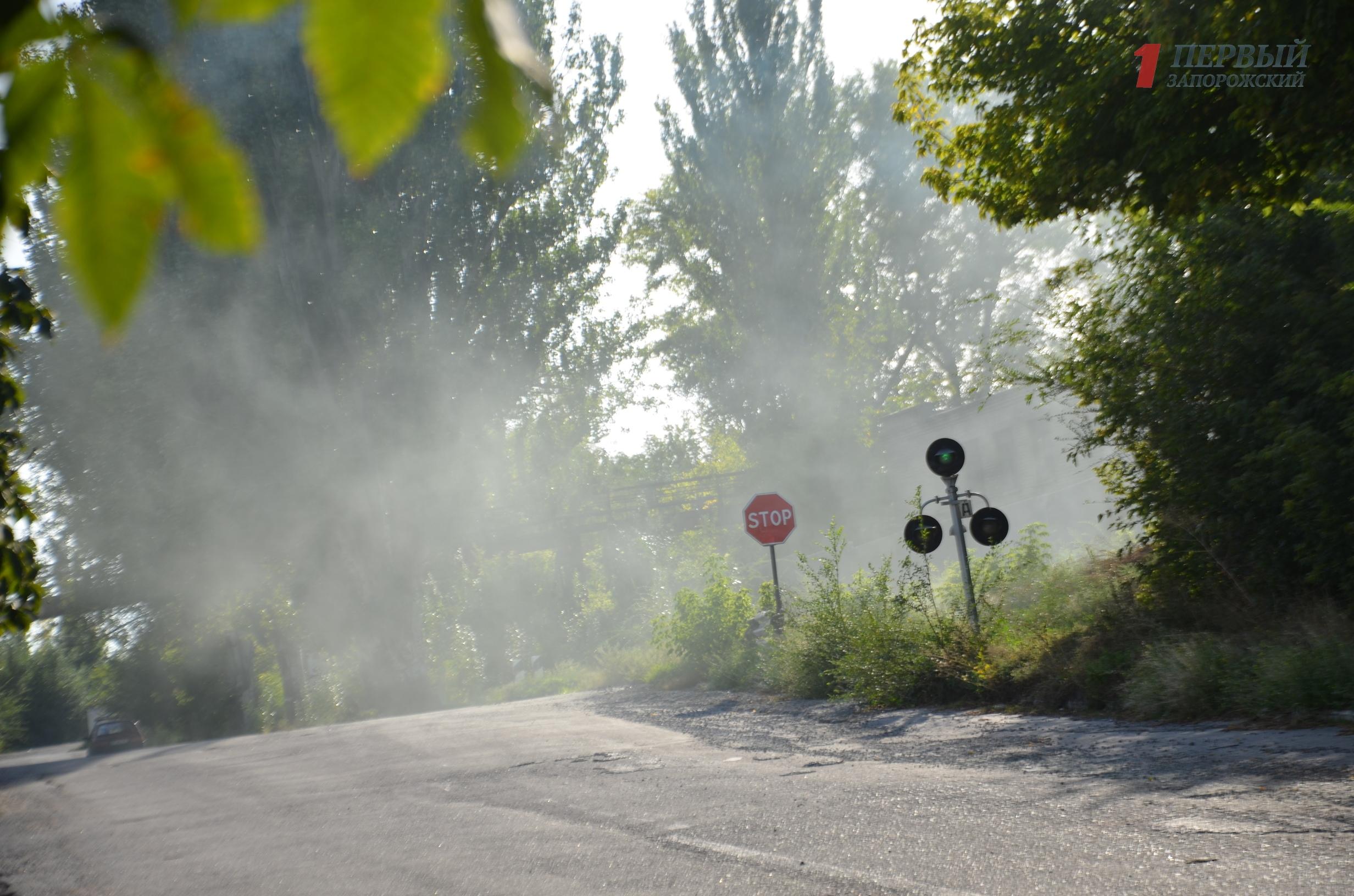 Жители Запорожья жалуются на едкий дым в одном из районов города - ФОТО, ВИДЕО