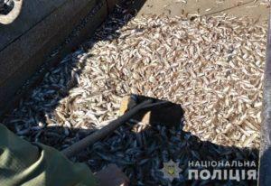 В Запорожской области разоблачили браконьеров, которые занимались выловом «молодняка» - ФОТО