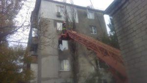 В Запорожской области аварийное дерево рухнуло на жилой дом - ФОТО