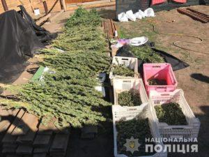 В Запорожском районе во время обысков изъяли наркотиков на 2 миллиона гривен - ФОТО, ВИДЕО