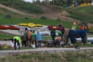 В Запорожье на «Радуге» создают сказочные композиции из 18 тысяч цветов - ФОТО