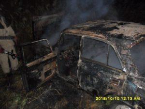 В Запорожской области дотла сгорел легковой автомобиль - ФОТО