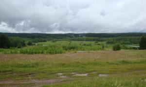Прокуратура намерена отобрать у нерадивых фермеров участок земли в 50 гектаров, которые они незаконно использовали