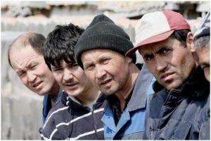 В Запорожской области обнаружили шестерых нелегалов - ФОТО