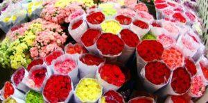 В Запорожье на Бабурке появится коммунальный цветочный рынок