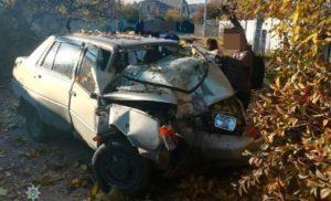 В Запорожье легковушка врезалась в дерево: водителю стало плохо за рулем - ФОТО