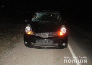 На запорожской трассе водитель за рулем авто