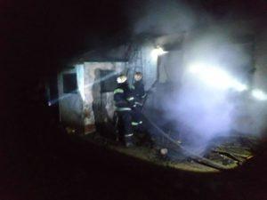 В Запорожской области в результате пожара погибли трое маленьких детей - ФОТО