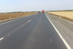 В Запорожской области двое автомобилей на трассе занесло в кювет