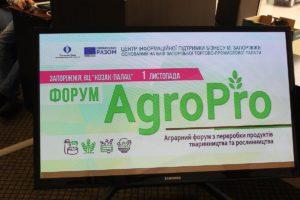 В Запорожье обсудили, как запорожским предпринимателям из агросектора выйти на украинские и международные рынки   - ФОТО