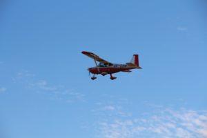 В Запорожской области с самолетов разбросали вакцину против бешенства - ФОТО